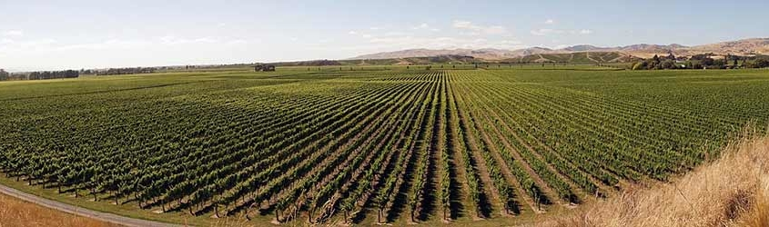 Agricultural Trends to Watch in 2018
