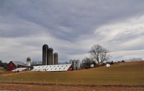 Farm Bill Resources In-Depth
